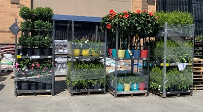Retail Display Rack Example Image - Plants and Flowers