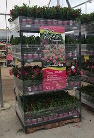 Retail Display Rack Example Image - Nursery