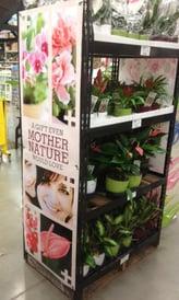 Retail Display Rack Example Image - Plants