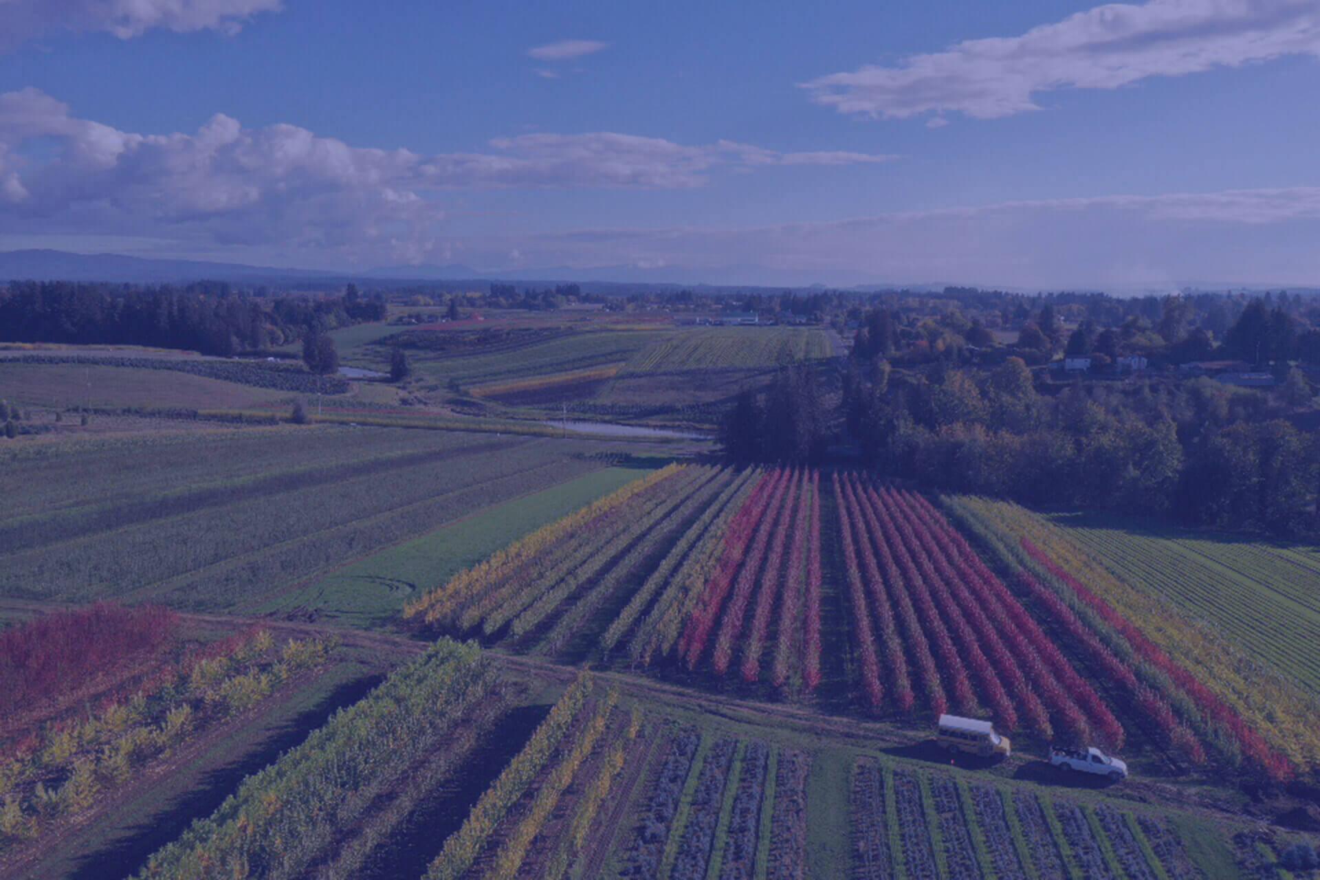 Sester Farms Image